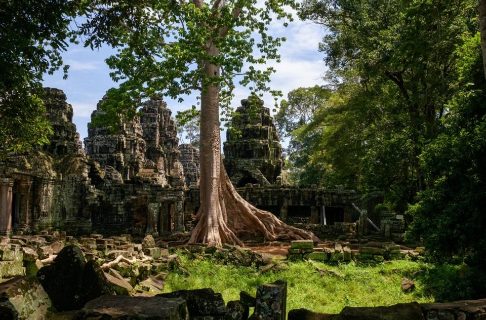 Angkor Thom, Ta Prohm, Banteay Srei, Siem Reap, Cambodia